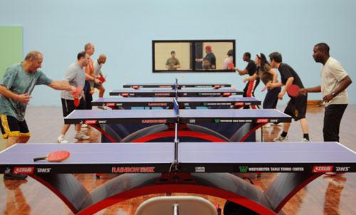 Miraculous Westchester Table Tennis Center Download Free Architecture Designs Intelgarnamadebymaigaardcom